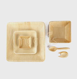 Eco-friendly Leaf Plates - Buy Online | Disposable Areca